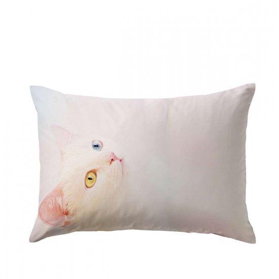 Калъфка памучен сатен 50/70 - Бяло коте