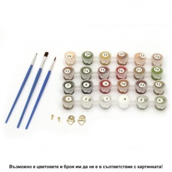 Комплект за рисуване по номера с платно 40х30 см - Модел 1