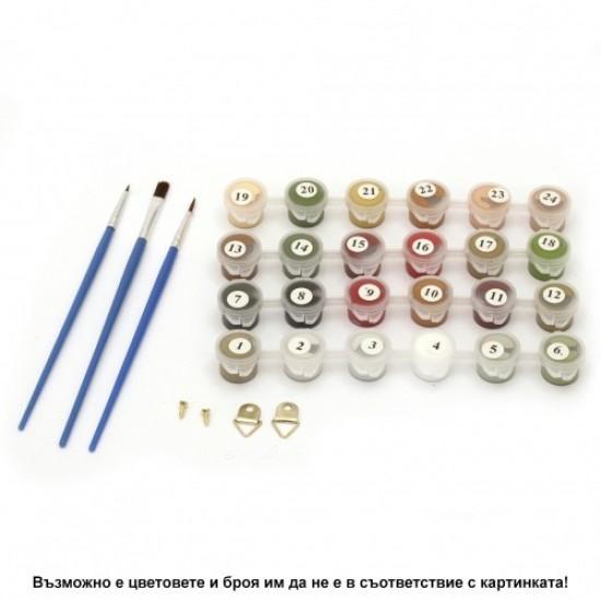 Комплект за рисуване по номера с платно 40х30 см - Модел 19